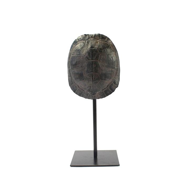 By-Boo Schildpaddenschild 'Katana' small, kleur Bruin Woonaccessoires | Decoratie kopen